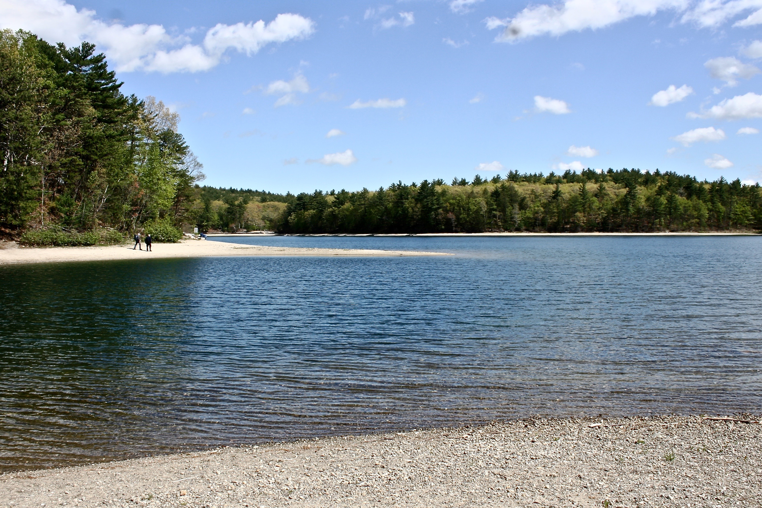 a life in walden pond In the mid-19th century, american writer henry david thoreau retreated to walden pond to connect with nature and write about the meaning of life for his celebrated book, walden: or life in the woods.