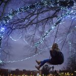The 'swing tree' near Mirror Lake, home to two wooden swings since about 2010, has become a popular spot on campus. The cover of the Spring 2018 issue of UConn Magazine featured UConn student Alyssa Czerwinski on one of the swings. But by early fall, the swings had been taken down while experts work to preserve its health. (Mark Mirko/Hartford Courant Photo)