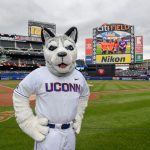 Jonathan the Husky attends a New York Mets baseball game at Citi Field in Queens New York on June 3, 2018. (Peter Morenus/UConn Photo)
