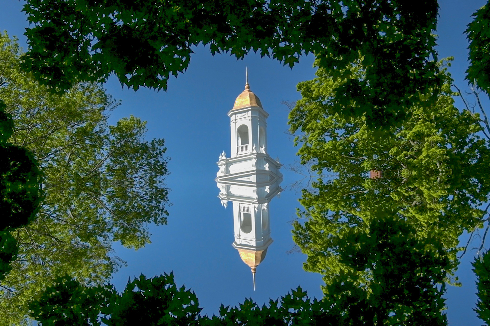 See UConn from a different perspective this summer. (Angelina Reyes/UConn Photo)