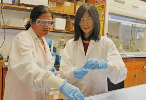 Xiuling Lu, right, and Rajeswari (Raji) Kasi are developing polymeric nanoparticles containing doxorubicin in hopes of more effectively treating cancer. (Karin Burgess/UConn Photo)