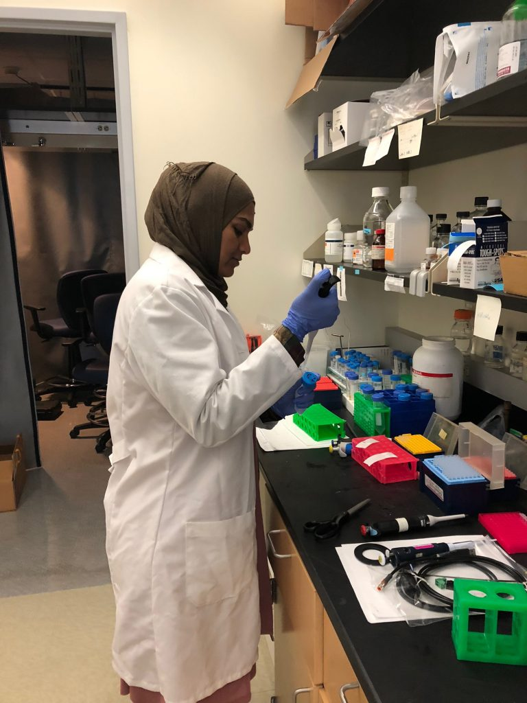 PIE fellow Affrin Ahmed, a second year UConn graduate student, in the lab. (UConn Health Photo)