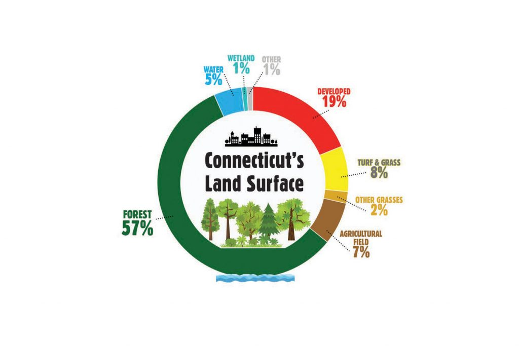 Percentages of Connecticut's land surface in 2015. (Graphic by Maxine Marcy for UConn)