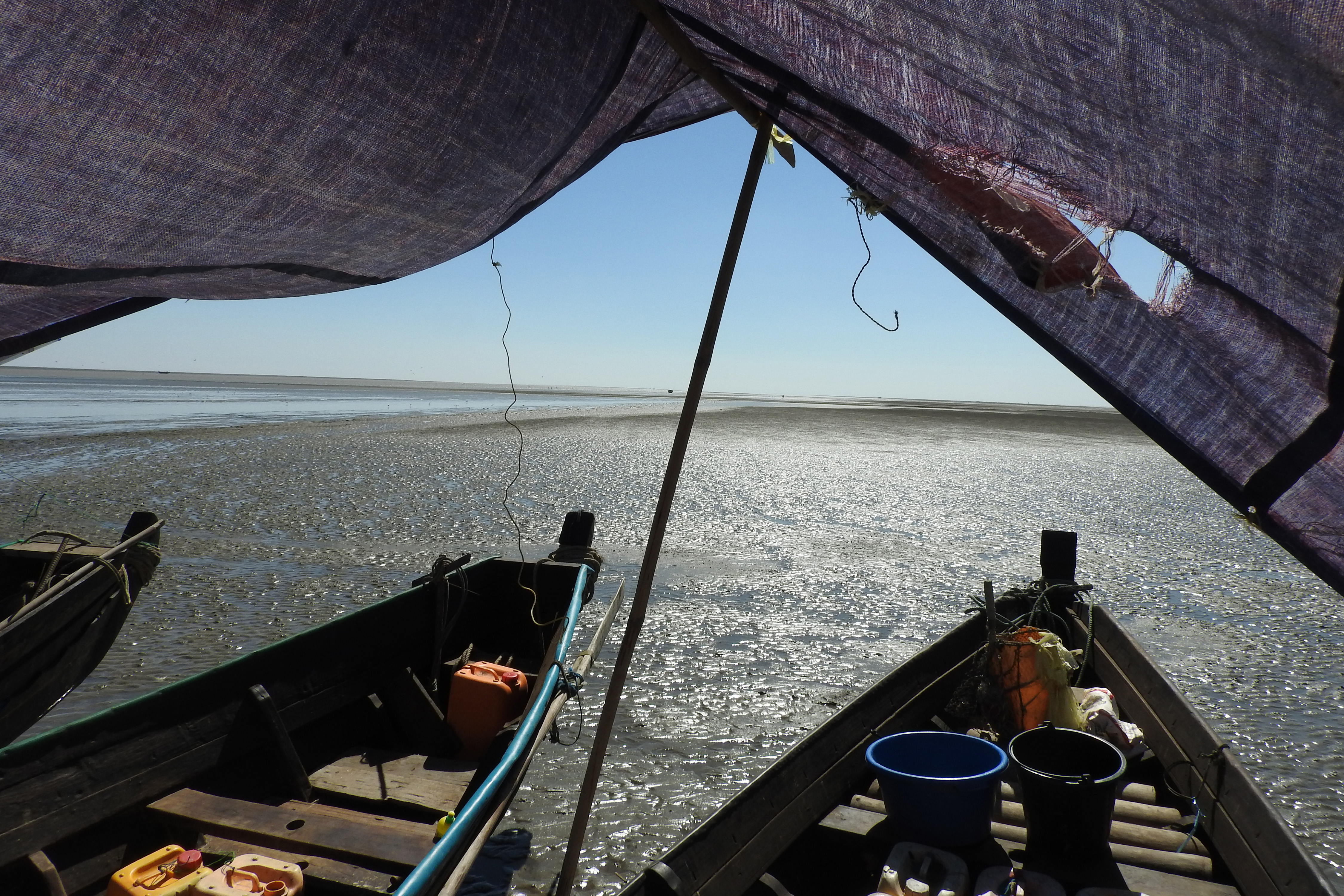 A view from the survey boats, while waiting for the tide to come in and allow travel to the next location, Gulf of Mottama. (Chris Elphick/UConn Photo)