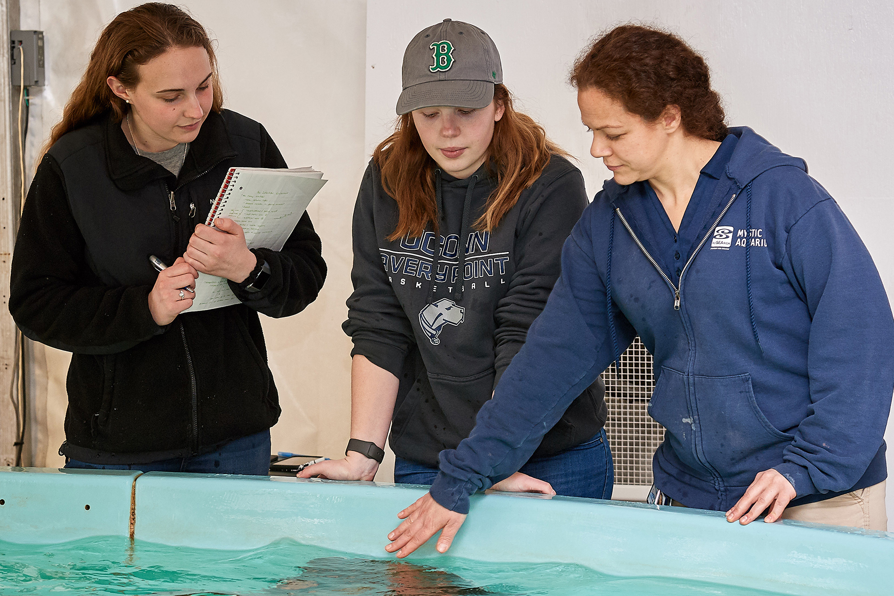 Seniors Jessica Hinckley, left, and Mia Dupuis with instructor Tracy Romano at Mystic Aquarium's ray touch pool, tracking how ray movement differs when guests are not in the exhibit. (Peter Morenus/UConn Photo)