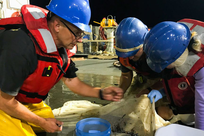 Researchers examine a trawl sample from the Ocean Twilight Zone on board the R/V Henry B. Bigelow. (Photo by Jennifer Berglund, Oh Sister Productions)