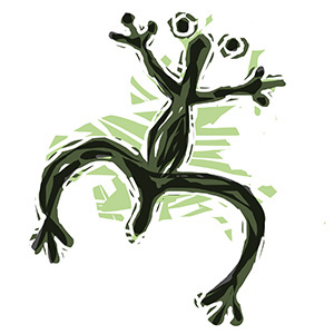 Frog. (John Bailey/UConn Illustration)