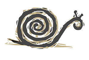 Snail. (John Bailey/UConn Illustration)