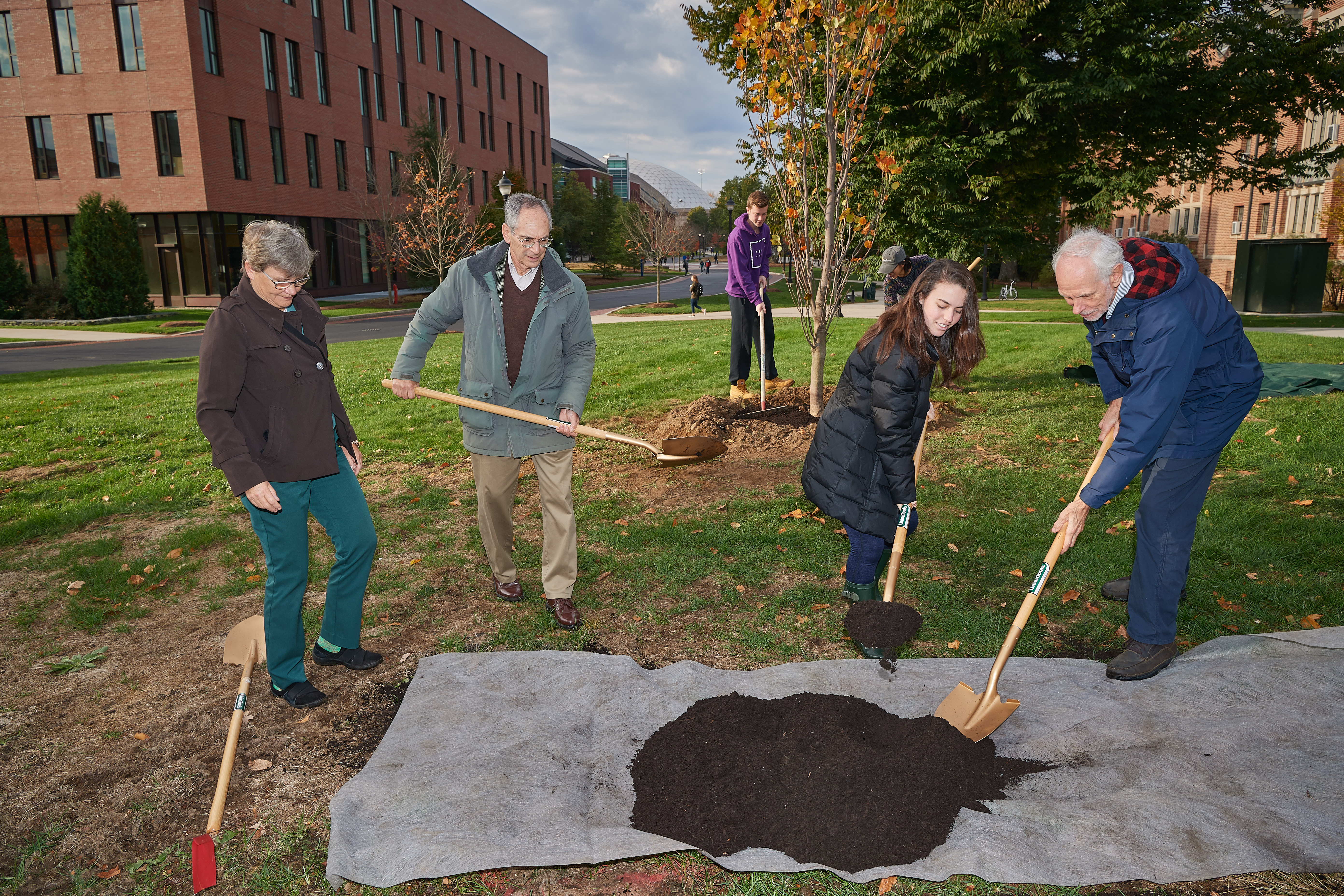 Eileen McHugh, university tree warden, left, Richard Brown, Distinguished Professor Emeritus of History, Natalie Roach '21 (CLAS), and Greg Anderson, Distinguished Professor Emeritus of Ecology and Evolutionary Biology, participate in the ceremonial planting of the Class of 2019 tree near the William H. Hall Building on Oct. 23, 2018. (Peter Morenus/UConn Photo)