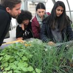 Adjunct professor Ryan O'Connor consults students enrolled in an Internet of Things course that uses emerging technology to improve plant life at UConn's Spring Valley Farm. Students, from left, are Nicole Hamilton '19 (BUS), Tara Watrous '19 (CLAS), and Radhika Kanaskar '18 (BUS). (Claire Hall/UConn Photo)
