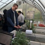 Sam Bartlett '19 (BUS, ENG) is enrolled in an elective offered by the School of Business that uses emerging technology to improve results at a greenhouse at UConn's Spring Valley Farm. (Claire Hall/UConn Photo)