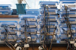 Stacks of Environmental Microcontroller Units (EMUs) that were developed by UConn researchers to facilitate the collection of fine-scale data. (Sean Flynn/UConn Photo)