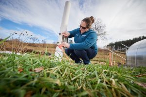 Kristina Wagstrom, assistant professor of chemical and biomolecular engineering, checks a precipitation collector at Spring Valley Student Farm on Nov. 30, 2018. (Peter Morenus/UConn Photo)