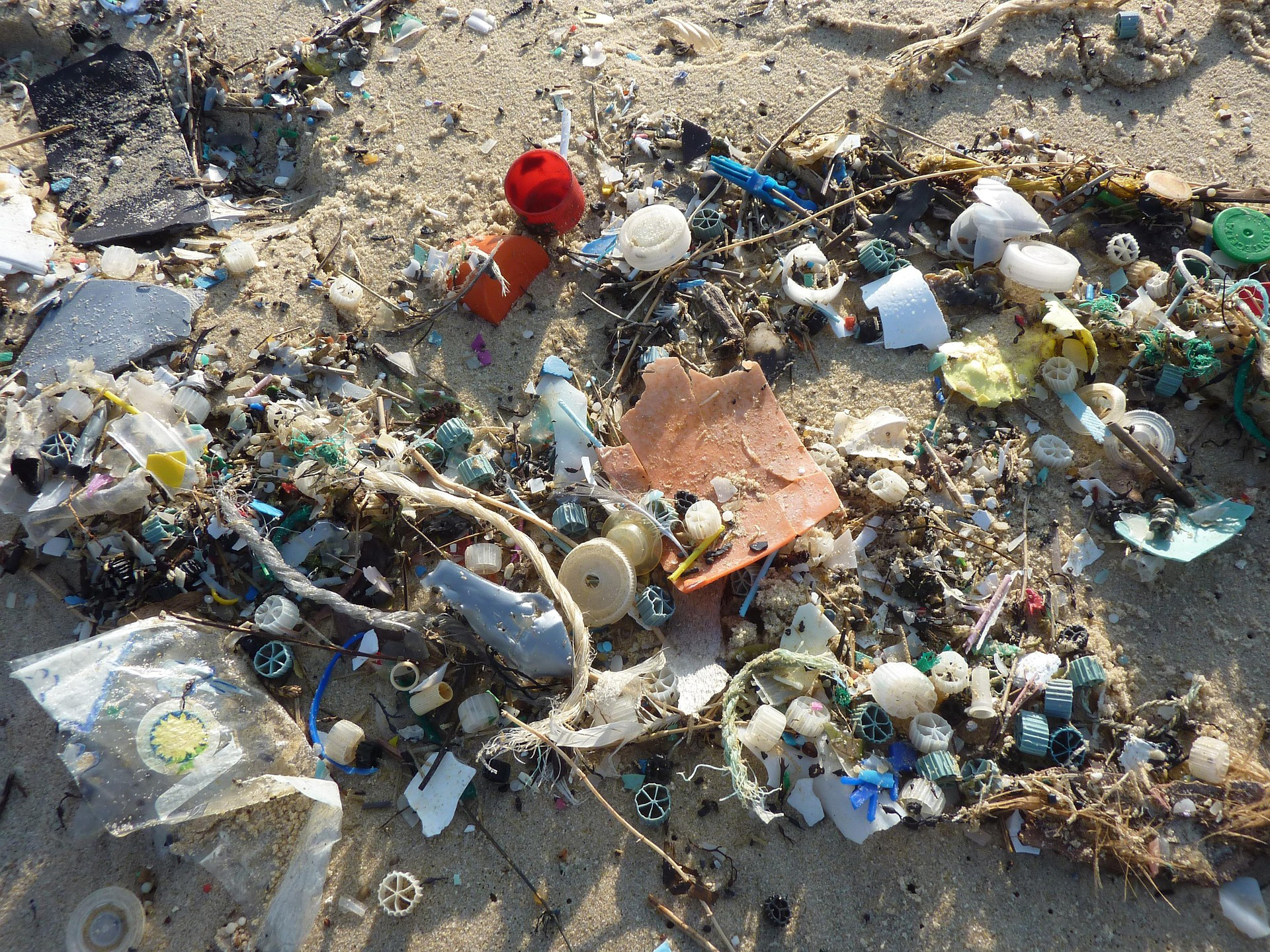Photos of plastic in the ocean. Courtesy of Pixabay