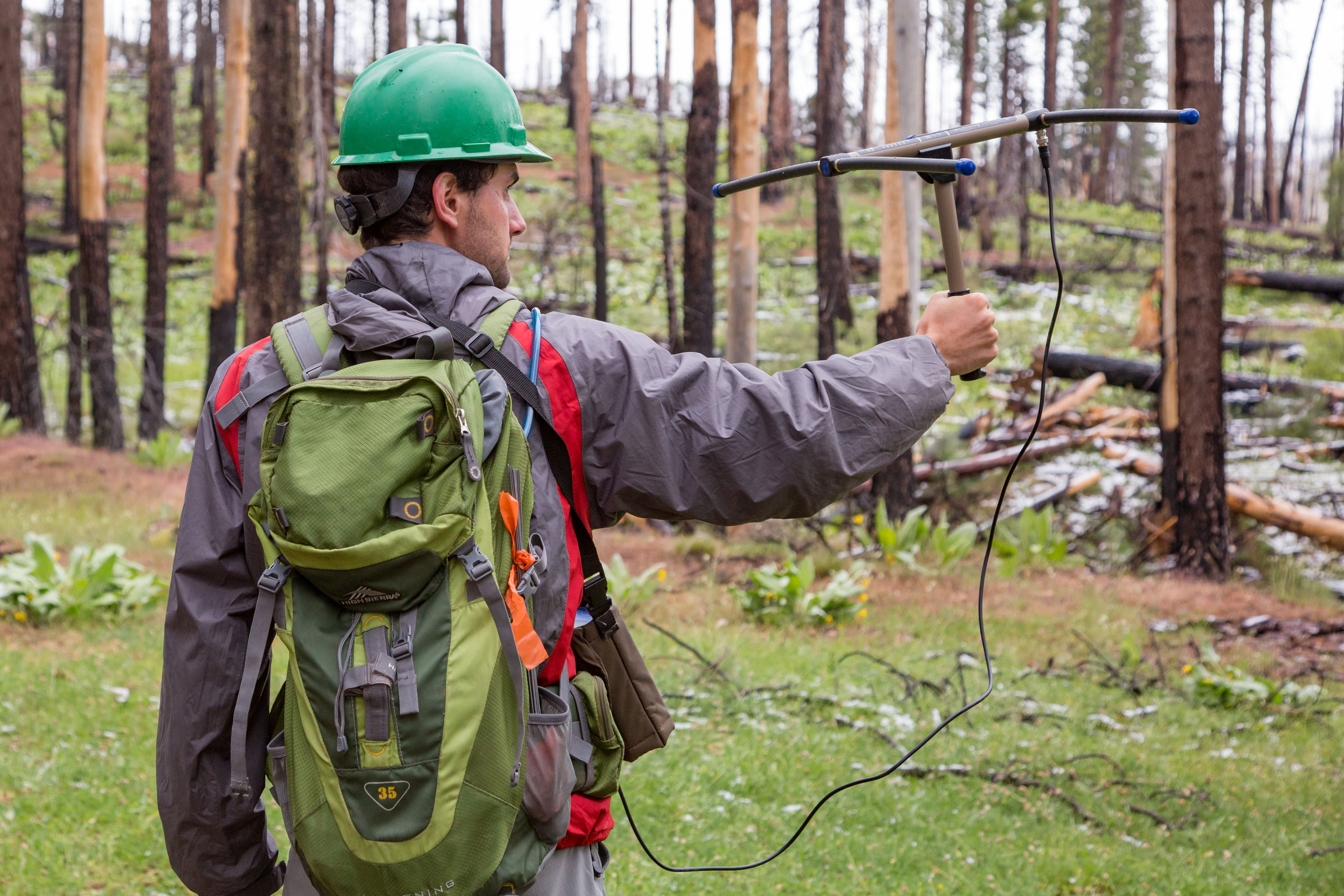 Andrew Stillman uses radio-telemetry to track the movements of black-backed woodpeckers in post-fire areas. (Photo by Jean Hall)