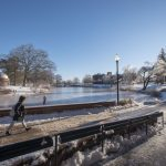 A student walks around the frozen Swan Lake near the Chemistry Building. (Sean Flynn/UConn Photo)