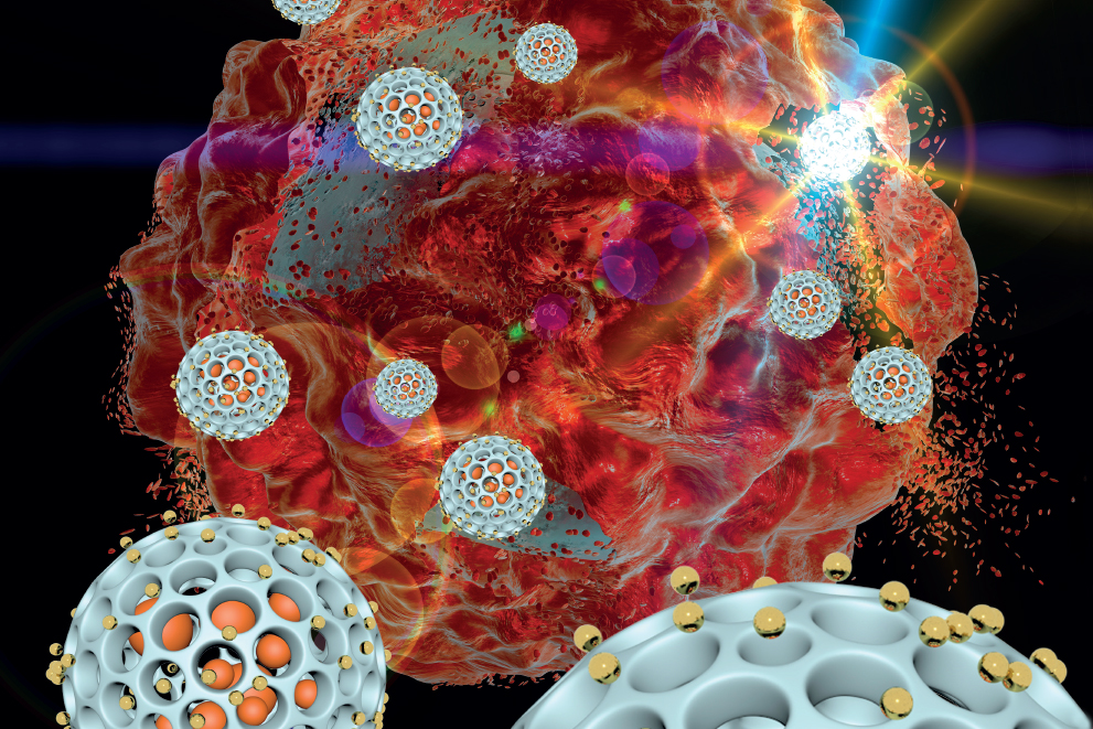 Nanoparticles target tumors in peritoneal cavity.