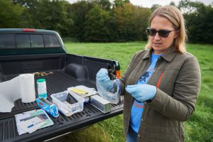 Tracy Rittenhouse, who teaches wildlife techniques and researches wild populations, traps small mammals along the edge of the Fenton tract of the UConn Forest. (Peter Morenus/UConn Photo)
