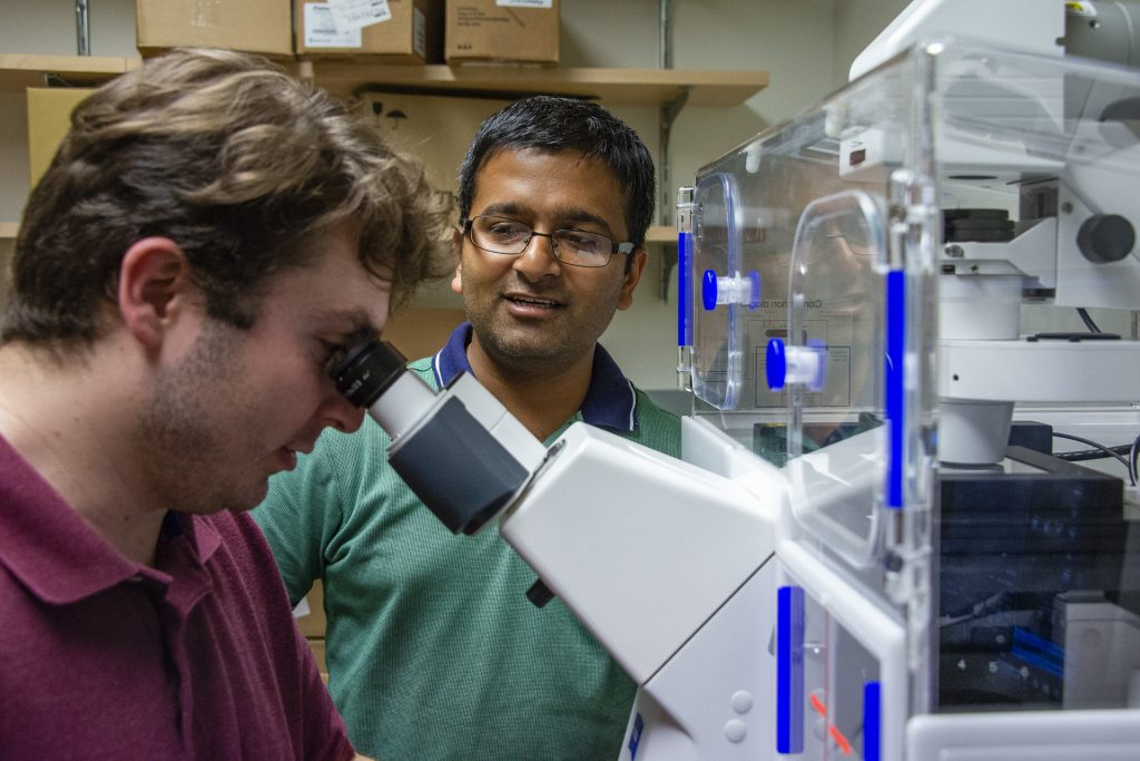 Assistant professor Kshitiz, center, looks on as Visar Ajeti, a postdoctoral fellow, views cells through the microscope in the Cell-Cell Communications Lab, on June 21, 2019. (Tina Encarnacion/UConn Health Photo)