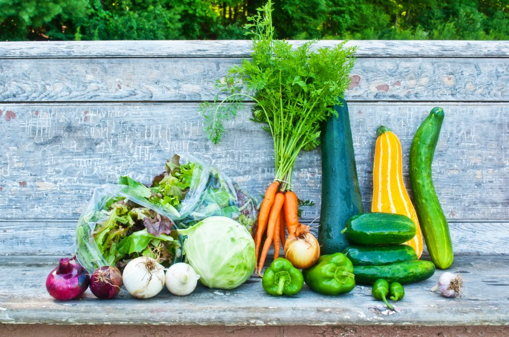 Freshly harvested summer vegetables sit on a wooden bench