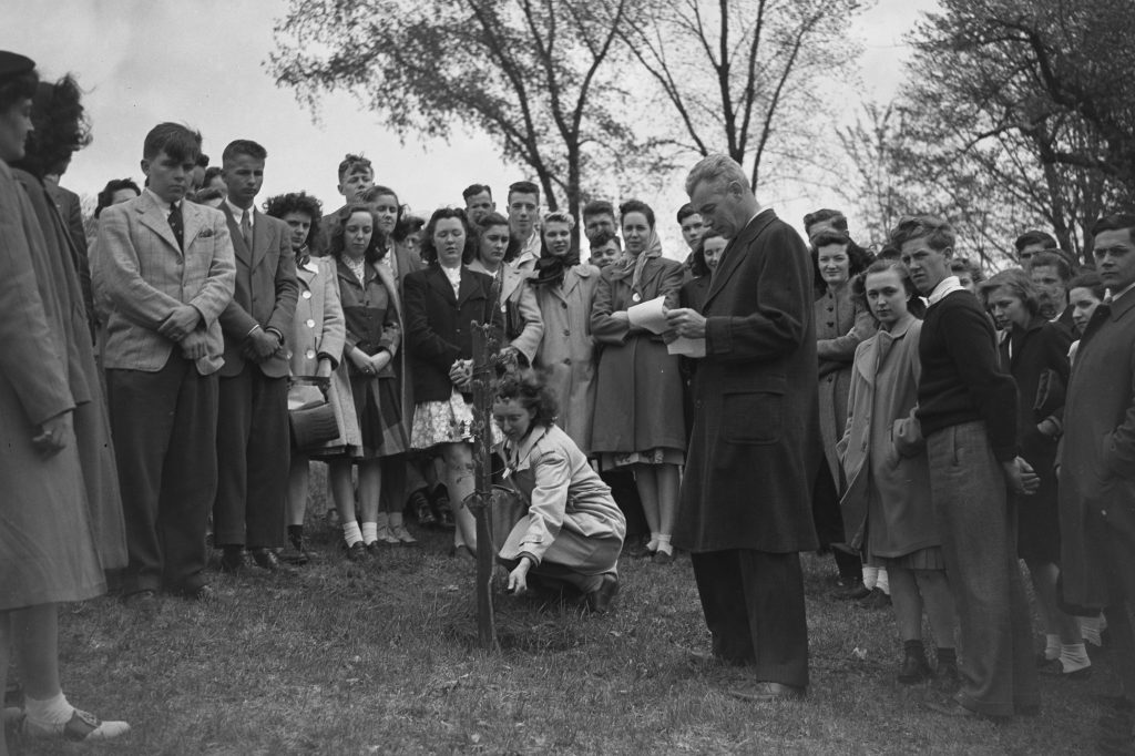 In April 1945, members of the local 4-H Club planted an oak tree in memory of Edwin G. Woodward, dean of the College of Agriculture, who died as a result of the circus fire, on a slope near the President's Residence on Oak Hill. (University Library Archives & Special Collections)