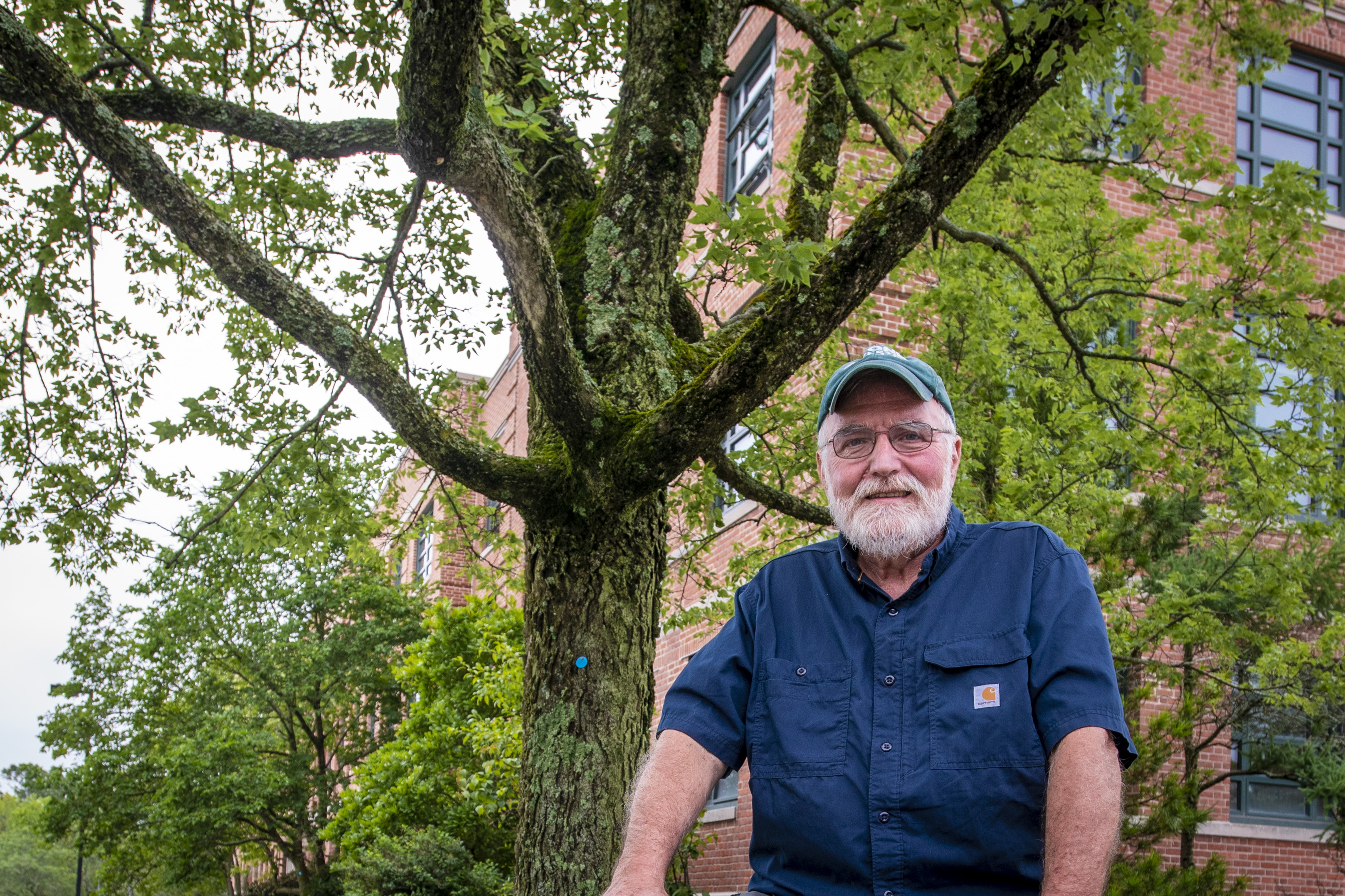 Associate extension professor Tom Worthley sitting next to an established hackberry tree, a native species, outside the Young Building . (Sean Flynn/UConn Photo)