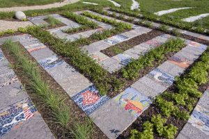 Cognitive Garden Takes Root at UConn Avery Point
