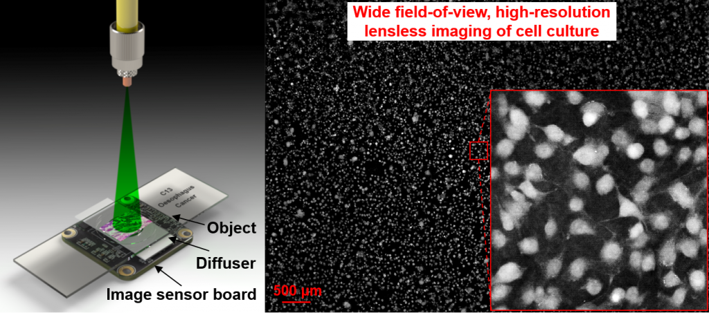 A diagram illustrating a new type of microscopy by UConn researchers.