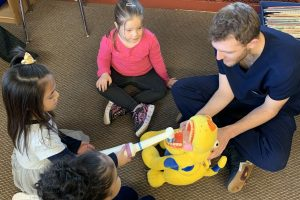 pre-K student brushes stuffed animal's teeth with a giant toothbrush