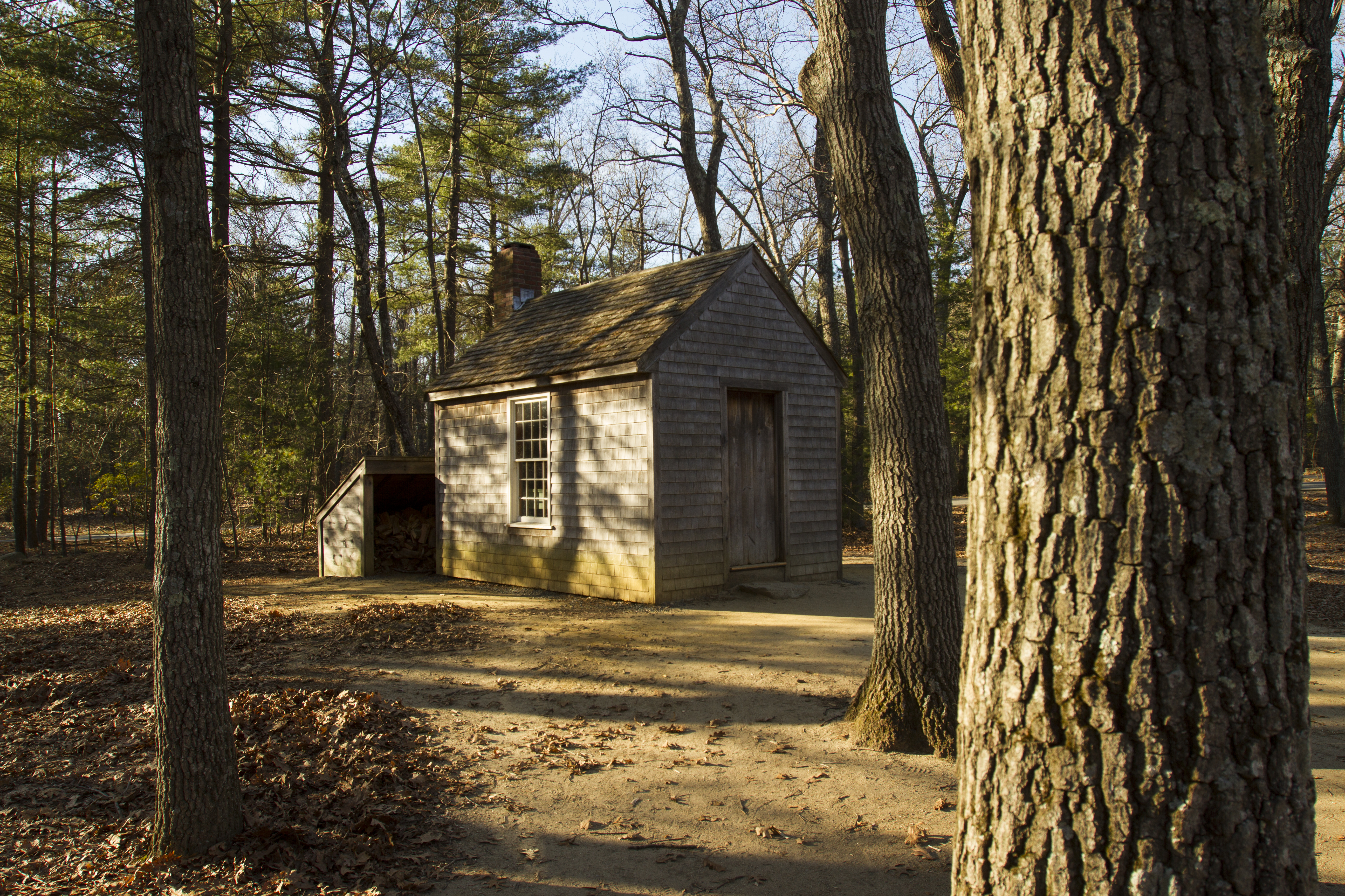 Recreation of Thoreau's Cabin at Walden Pond in Massachusetts. (Getty Images)