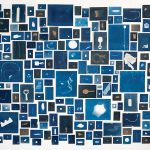 "Elizabeth Ellenwood, ""November 3, 2018 Collection,"" (2018), Installation of 240 cyanotype prints (courtesy of the artist)."