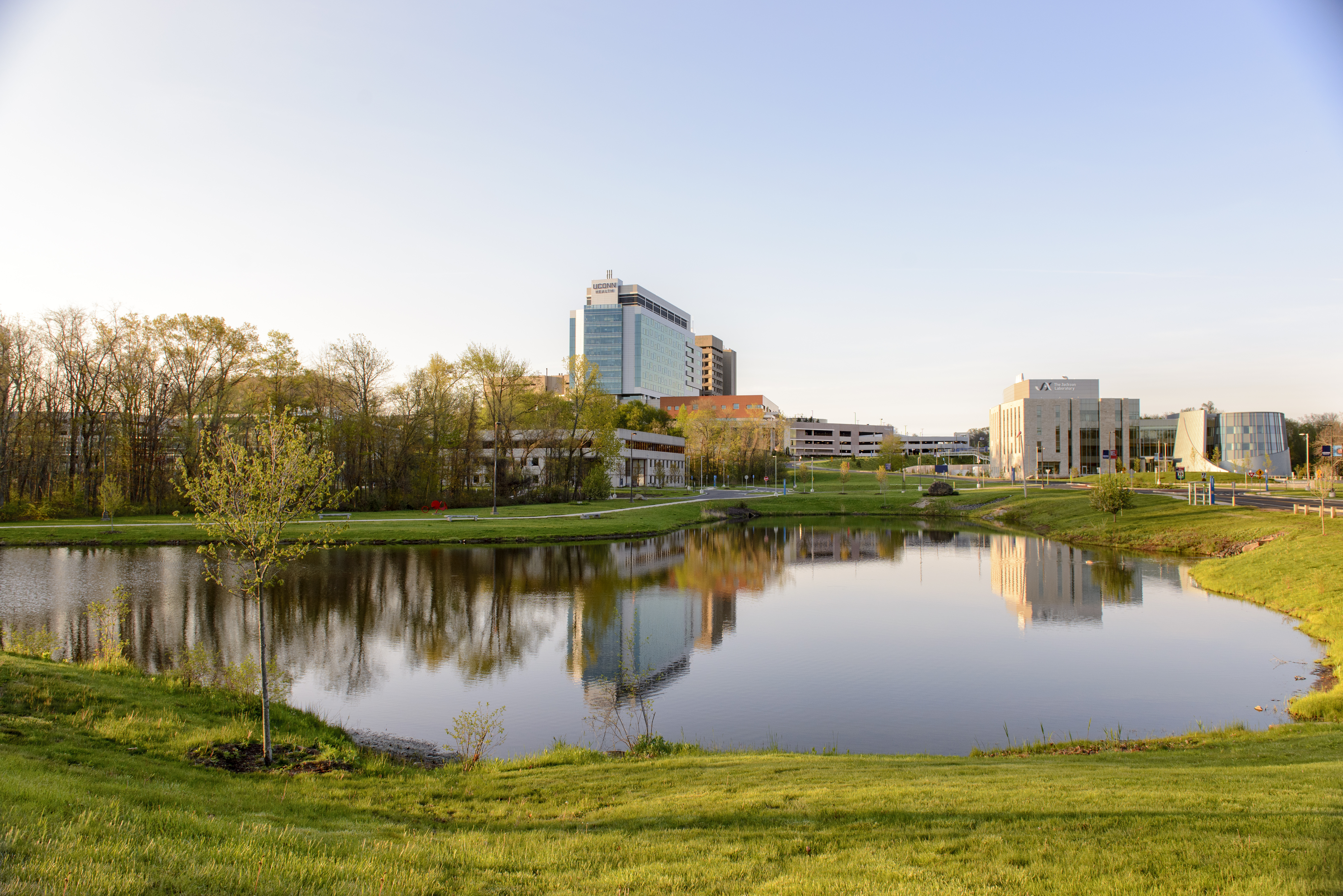 A view of the UConn Health campus.