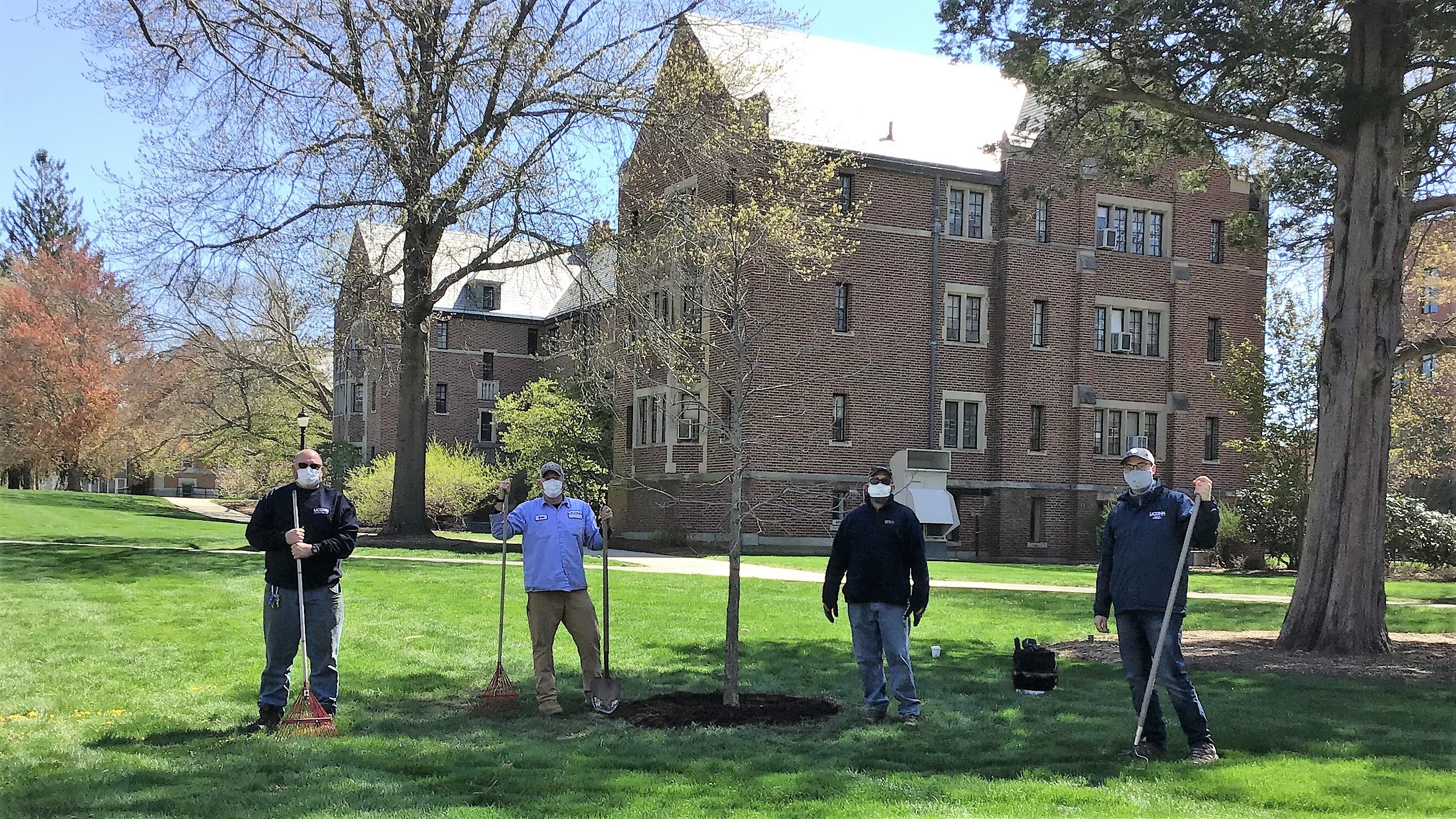 From left to rigth, Mike Kovach (landscape supervisor), Brian Murray (arborist), William Bates (arborist), and Patrick McKee (UConn Office of Sustainability) plant the Class of 2020 tree, an oak.