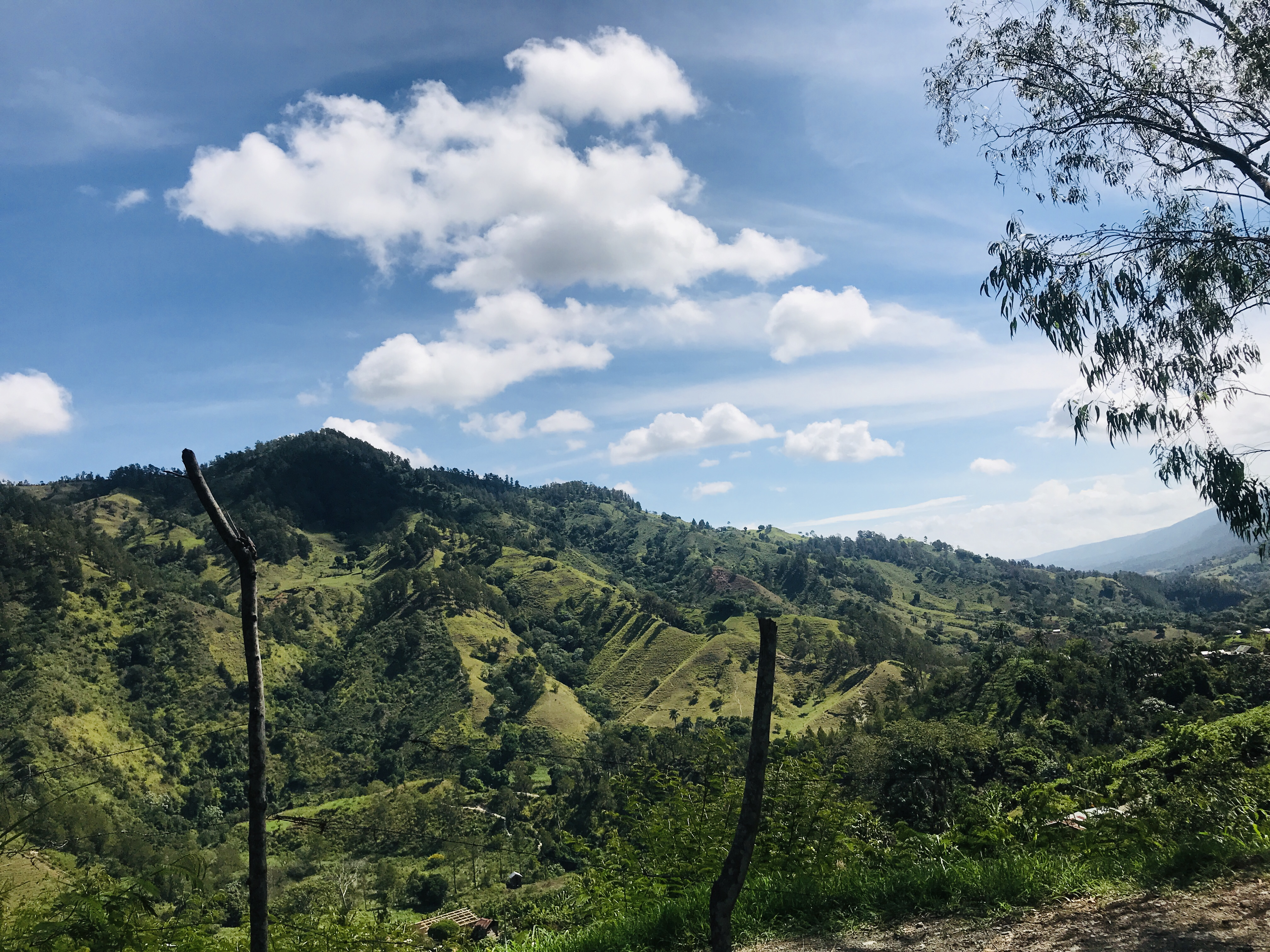 While the Dominican Republic is known for its beaches, it also boasts vast mountain ranges and fertile green valleys. Pico Duarte, at 3,098 meters (10,164 feet), is the highest peak in the Caribbean.