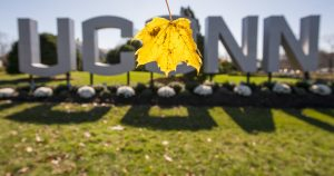 Leaves illuminated by sunlight as they drift in front of the large UConn sign on the Storrs campus
