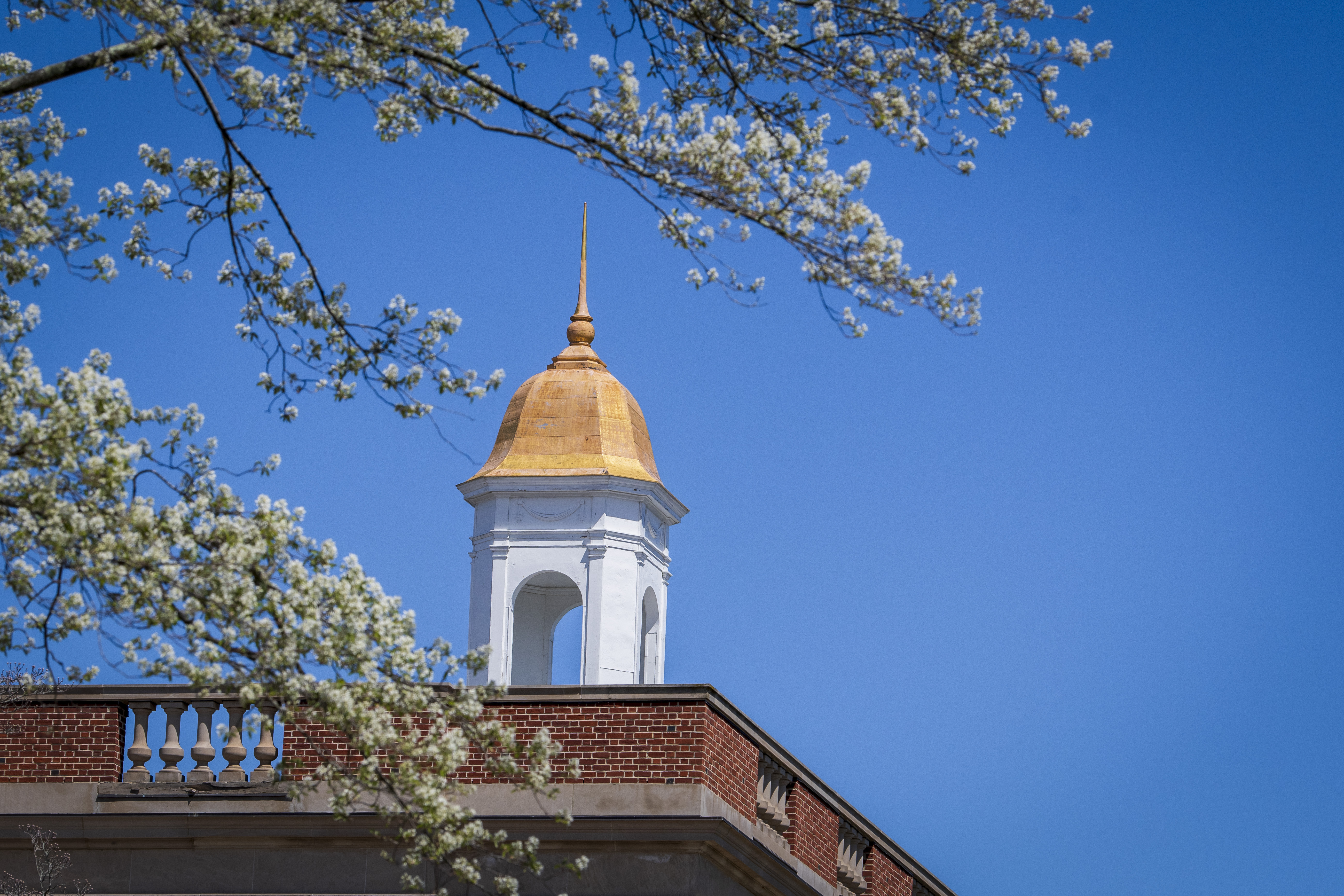 The golden cupola of the Wilbur Cross building on a spring day.