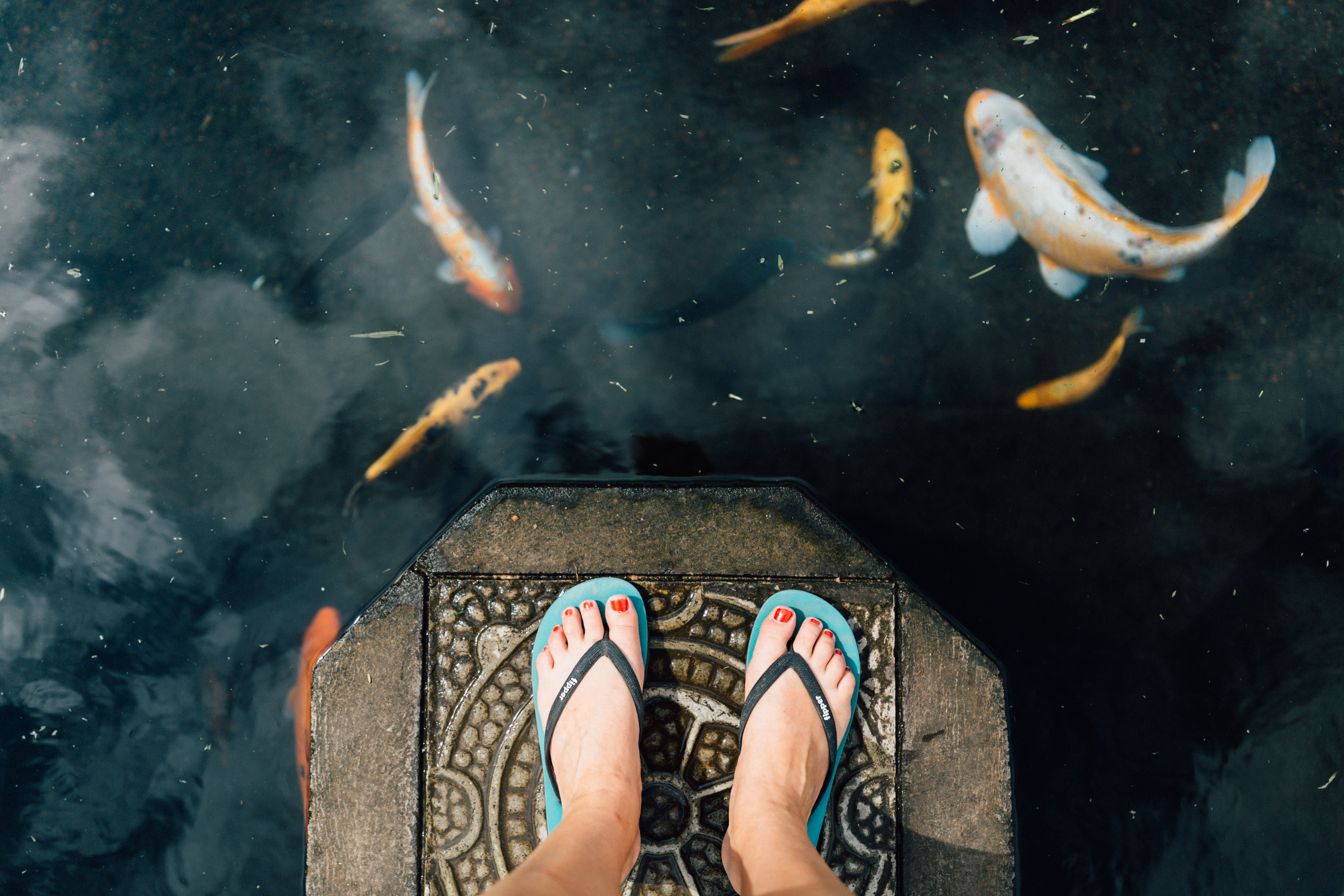 Woman in flip flops standing on a stone in a koi pond at Tirta Gangga, Bali, Indonesia.