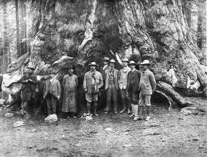 President Theodore Roosevelt and conservationist John Muir (to the President's left) in Yosemite Valley, California, 1903