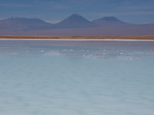 Laguna La Brava in Chile, where UConn researcher Pieter Visscher found clues that help explain how early life on Earth used arsenic to survive.