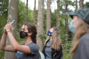 Female students in masks taking photos of trees with cell phones in the forst