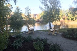 Campus Welcomes a New Garden to Foster Connection in Memory of the Late 'Swing Tree'