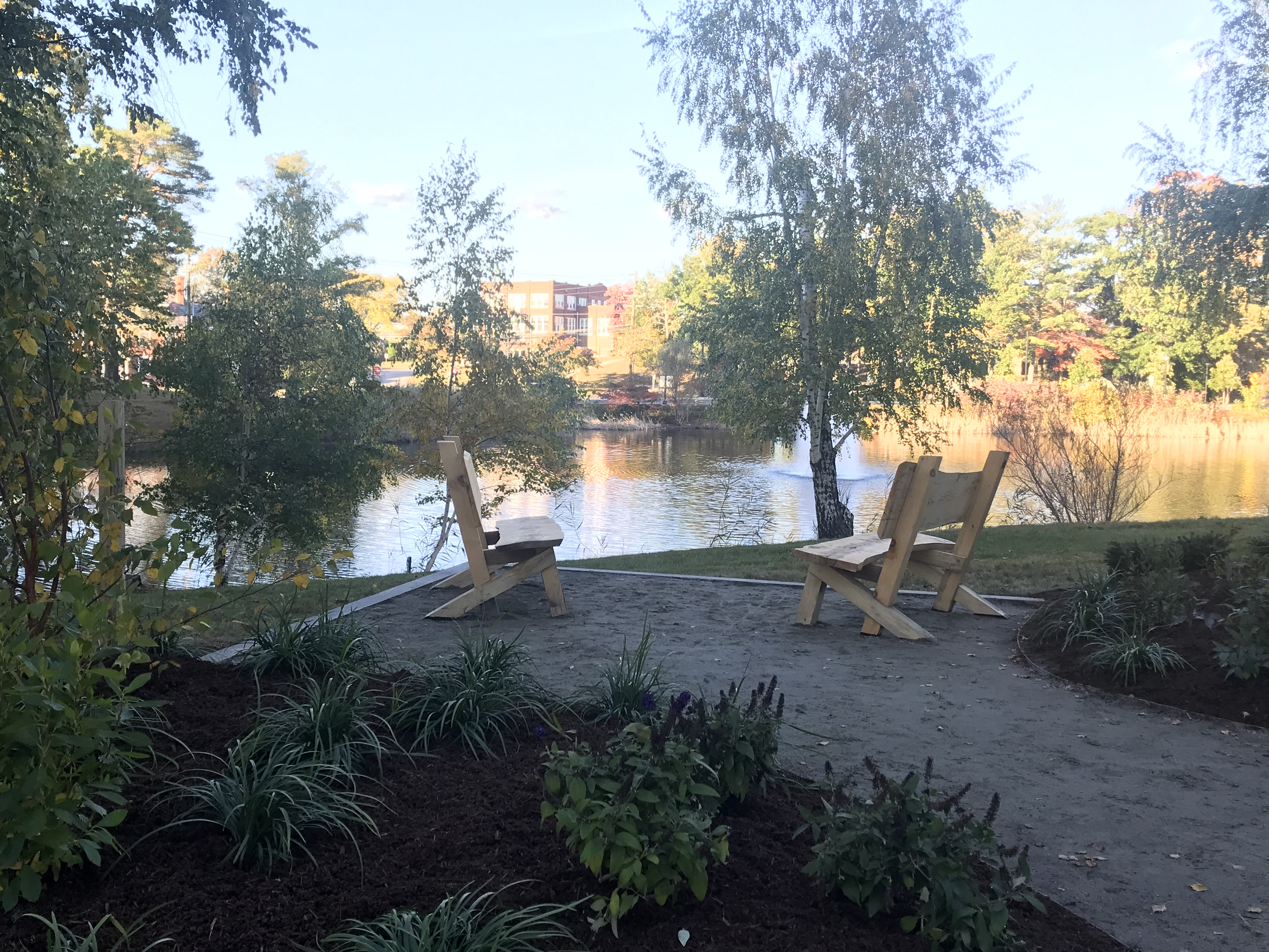 New buddy benches sitting on the side of swan lake