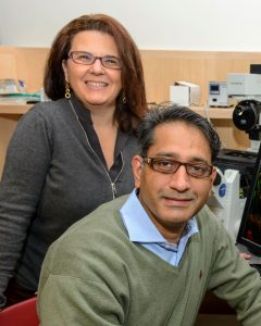 Paola Bargagna-Mohan and Royce Mohan in their lab