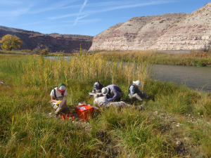 Researchers processing water samples on the banks of the Gunnison River in Colorado, looking for traces of selenium.