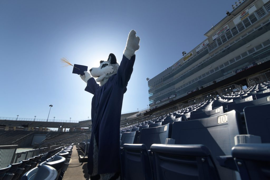 The costumed Husky mascot wears a graduation gown in the stands at Rentschler Field in East Hartford, which will host in-person commencement ceremonies in May.