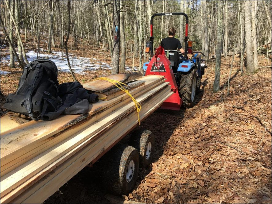 UConn Forestry crew hauling pine boards out of the forest