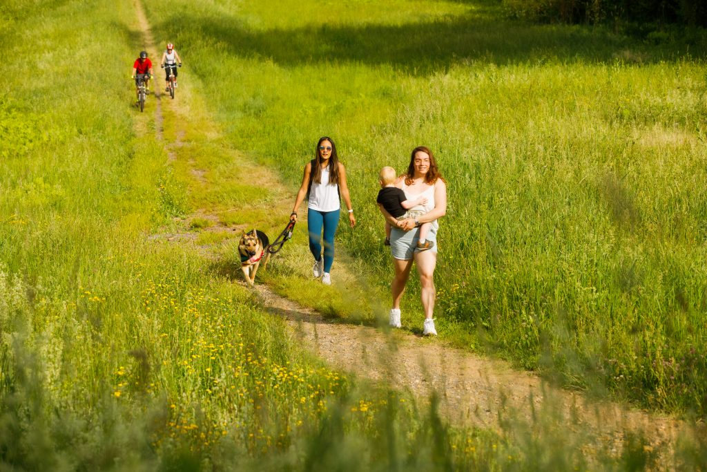 People walking a trail through tall grass. The Connecticut Trail Finder will be regularly updated with new information for hikers, cyclists, local businesses, and more.