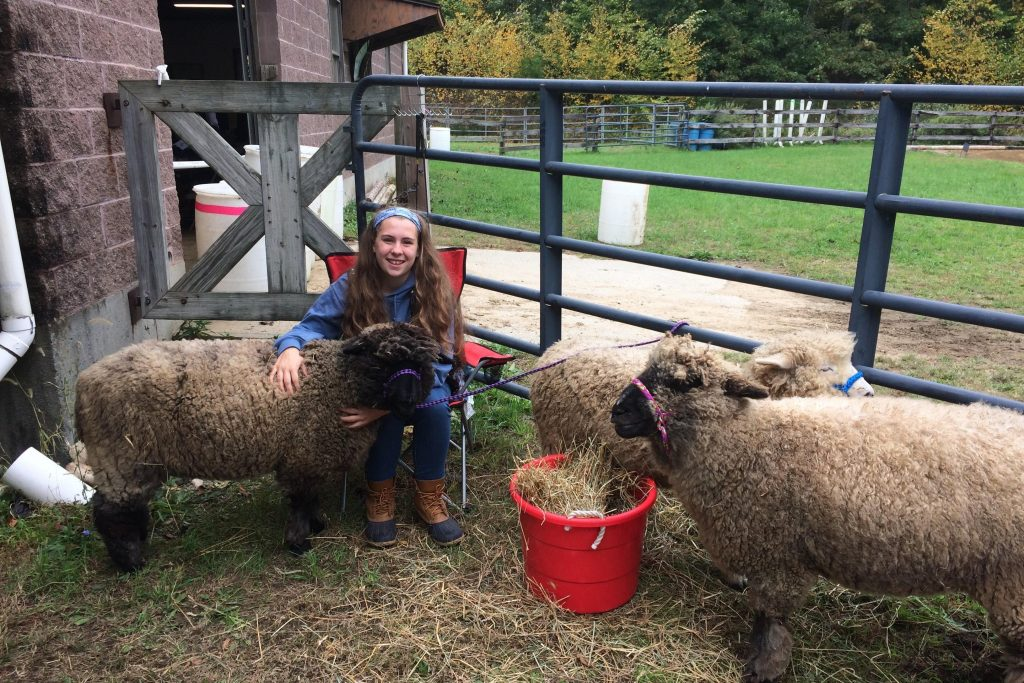 Smiling young woman sitting with sheep