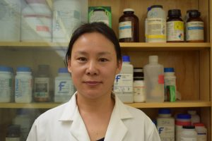 Haiying Tao, Assistant Professor of Soil Nutrient Management and Soil Health, Plant Science and Landscape Architecture