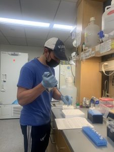 Juan Colberg Martinez prepares vials in his lab wearing a face mask.